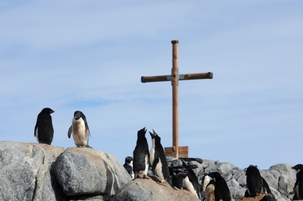 Adelie penguins gather at the base of a memorial at Mawson's Hut in Commonwealth Bay, Antarctica, Jan. 16. No word has emerged on what Pope Francis' climate change and environmental degradation encyclical might say or when it would appear in 2015, but references by officials at the Pontifical Council for Justice and Peace have pointed to a document that Catholics can apply in everyday life. (CNS photo/Dean Lewins, EPA) See YEAREND-CLIMATE Dec. 9, 2014.